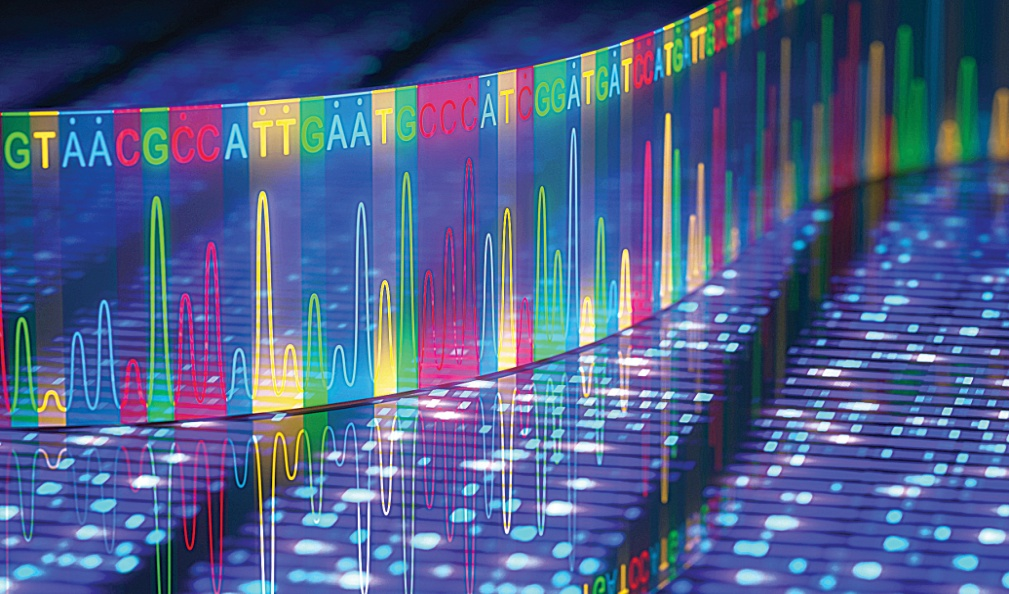 Next Generation Sequencing Data Analysis